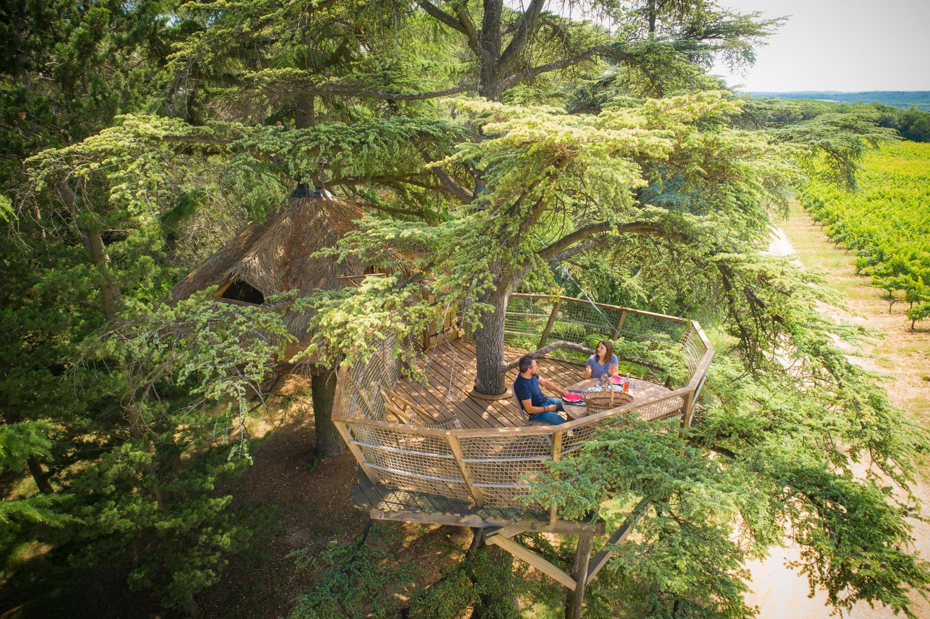 Photo 17 extérieur - petit déjeuner dans les arbres - vue sur vignoble - hébergement insolite à Montpellier - Tourisme de nature - Domaine saint Jean de l'Arbousier, Castries, Hérault