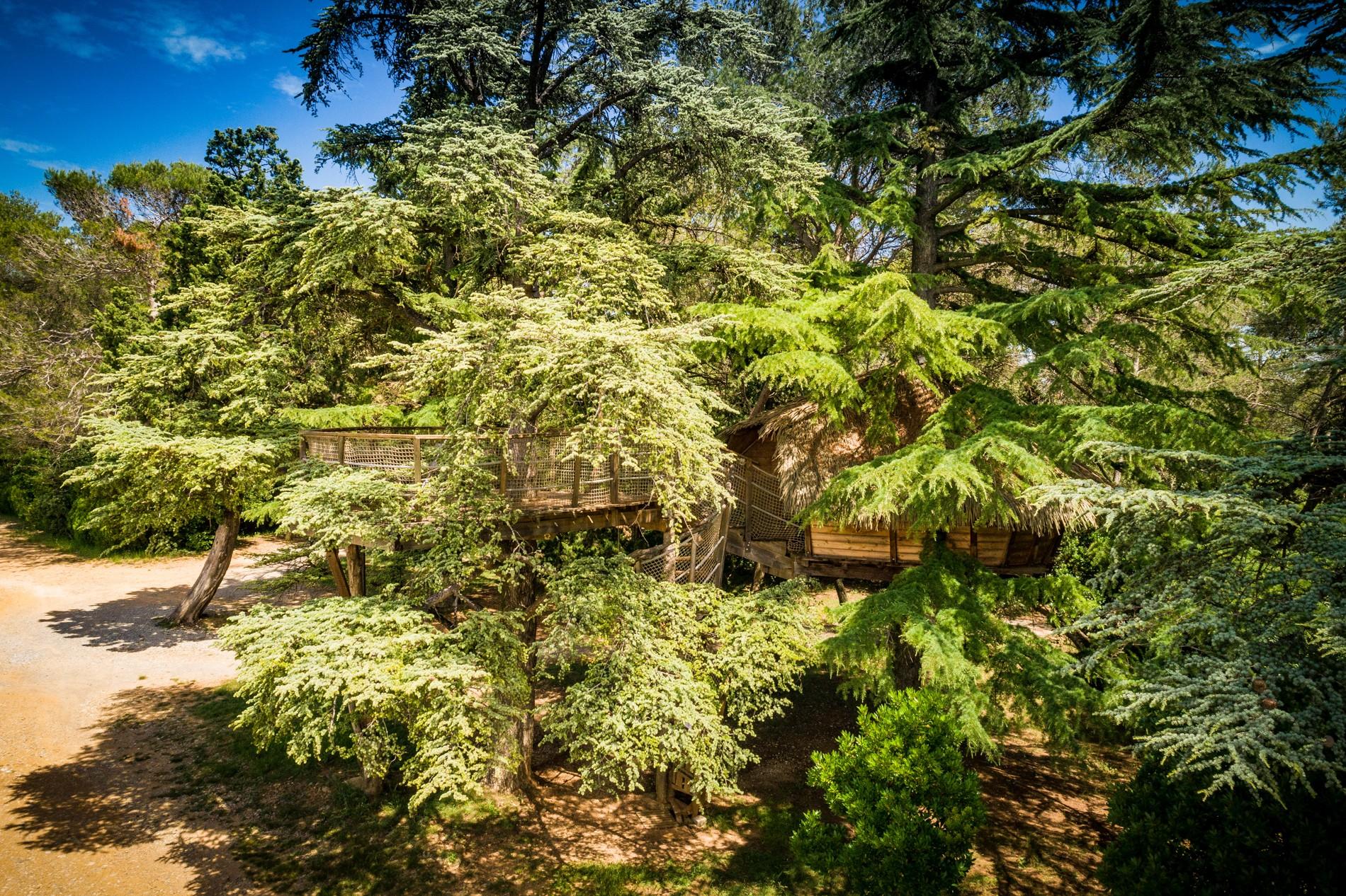 Photo 15 extérieur - Cabanes dans les arbres - hébergement insolite à Montpellier - Tourisme de nature - Domaine saint Jean de l'Arbousier, Castries, Hérault