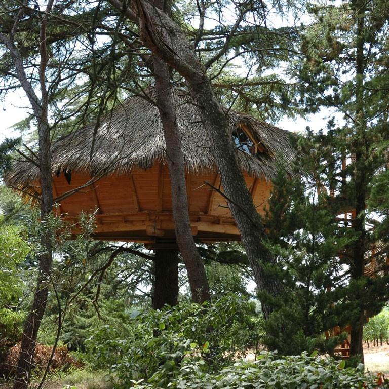 Cabanes dans les arbres - Crécerelle - séjour insolite Hérault - Domaine saint Jean de l'Arbousier