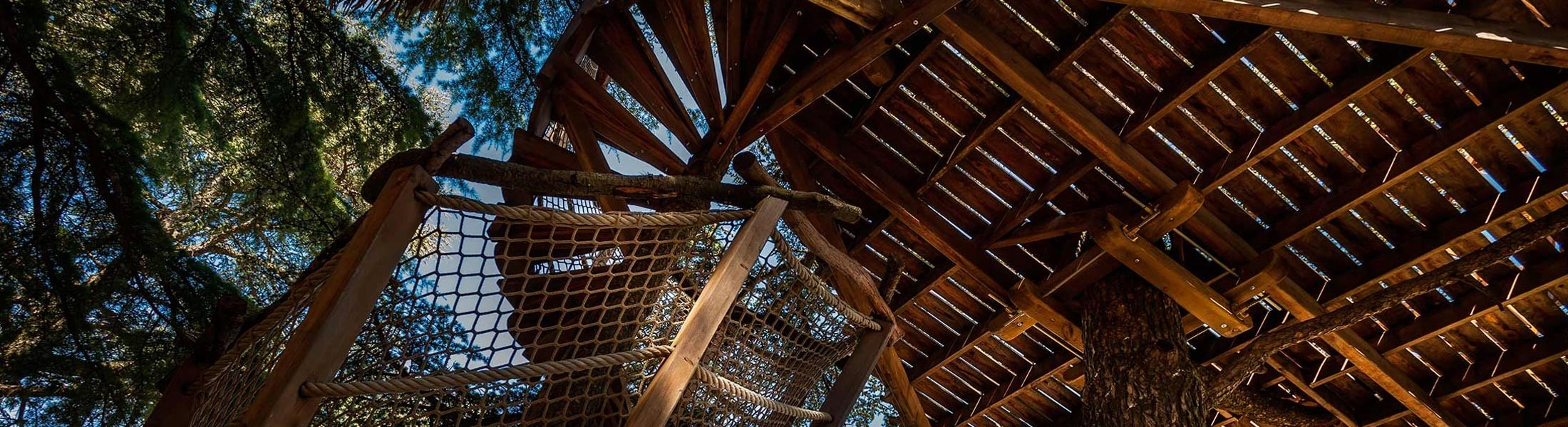 Header reservation disponibilite cabanes dans les arbres Montpellier